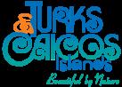 logo-turks